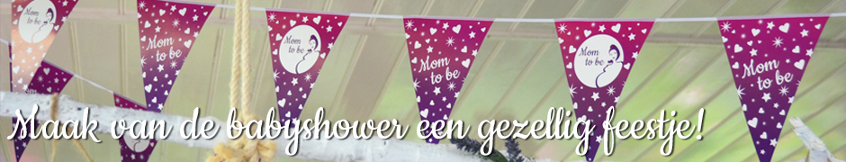 Babyshowerparty